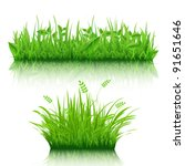 2 grass border  isolated on... | Shutterstock .eps vector #91651646