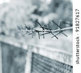 Strands Of Barbed Wire Against...