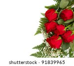 Stock photo six beautiful red roses isolated on a white background with room for your text 91839965