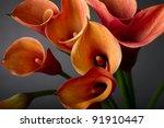 Bouquet Of Orange Calla Lilies...