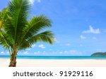 summer beach   palm tree ... | Shutterstock . vector #91929116