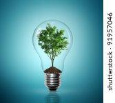 bulb light with tree inside on... | Shutterstock . vector #91957046