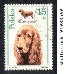 poland   circa 1989  a stamp...   Shutterstock . vector #91983569