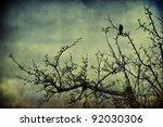 Blackbird On The Branch...