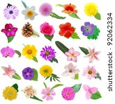assorted of 25 blooms in leaves | Shutterstock . vector #92062334
