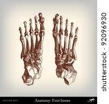 engraving vintage feet bones... | Shutterstock .eps vector #92096930