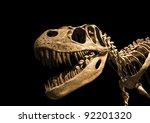 Tyrannosaurus Rex Skeleton...