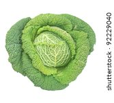 Cabbage Leafy Vegetable Plant...