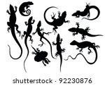 Stock vector lizard 92230876