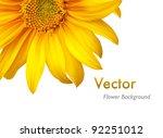 Flower Background. Vector...