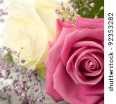 pink and white roses with...   Shutterstock . vector #92353282