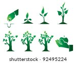 the stage of growth of a tree   Shutterstock .eps vector #92495224