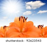 Floral Background With Orange...