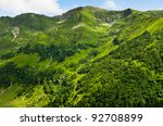 beautiful view of summer green... | Shutterstock . vector #92708899