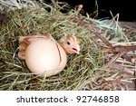 Scared little newly hatched chick hiding behind its egg - stock photo