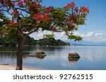 Paradise tropical beach - stock photo