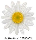 daisy  chamomile flower... | Shutterstock .eps vector #92763685
