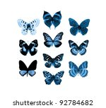 butterfly collection for design - stock photo
