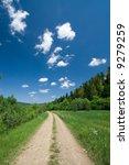 countryside road. beautiful... | Shutterstock . vector #9279259