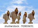 A Group Of Galapagos Hawks On...
