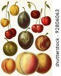 Different Varieties Of Fruit....
