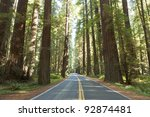 Avenue of the Giants, Humboldt Redwoods State Park, California - stock photo