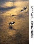 Footprints On Wet Shining Sand...