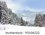 winter in mountains forest - stock photo