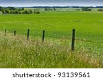 Wire Fence Along A Green Field...