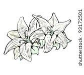 lily illustration | Shutterstock .eps vector #93172501