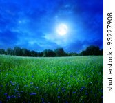 Cornflower Field Under Moon...