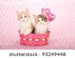 Stock photo valentine norwegian forest cat kittens in pink basket on pink heart background 93249448