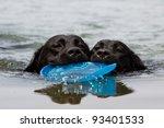 Stock photo labrador retriever puppy swim with frisbee 93401533
