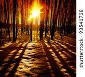 Last Rays Of The Sun In Winter...