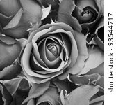 background of rose  black and... | Shutterstock . vector #93544717