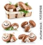 Set Fresh Mushroom Champignons...