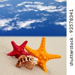 Pair starfish on the beach and blue sky, spa and summer vacation background - stock photo