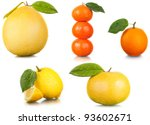 fruits. citrus. | Shutterstock . vector #93602671