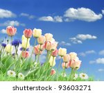 Colorful Spring Flowers And Grass Against A Blue Sky - stock photo