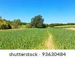 English Countryside Landscape...