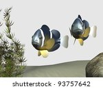clownfish   Shutterstock . vector #93757642