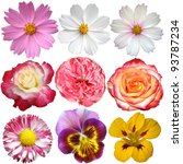 Stock photo set of flowers isolated on white background 93787234