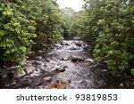 rocky stream - stock photo