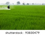 farmer spraying pesticide on... | Shutterstock . vector #93830479