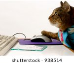 Stock photo busy cat 938514