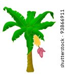 banana tree | Shutterstock . vector #93866911