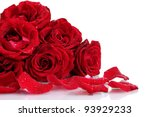 Stock photo beautiful red roses and petals isolated on white 93929233