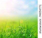 spring grass in sun light and... | Shutterstock . vector #94054771