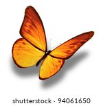 Stock photo yellow butterfly isolated on white 94061650