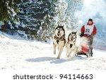 Sled Dog Racing   Musher...